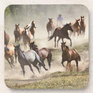 集合の間に走っている馬モンタナ コースター