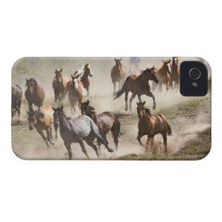集合の間に走っている馬モンタナ Case-Mate iPhone 4 ケース