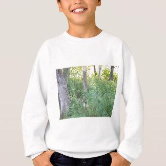 雑木林 スウェットシャツ