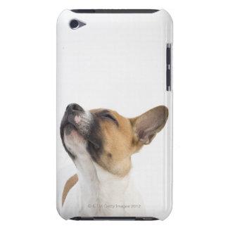 雑種の子犬 Case-Mate iPod TOUCH ケース