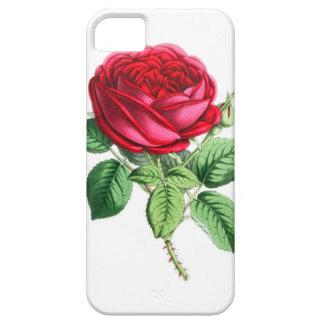 雑種の永遠は-ナポレオンIII上がりました iPhone SE/5/5s ケース