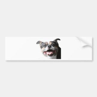 雑種犬の小犬の天使-混合された品種-イヌ科動物 バンパーステッカー