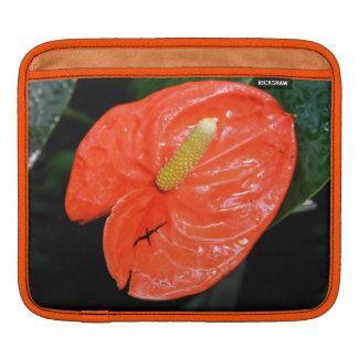 雑色の中国のなランタンのiPadの袖 iPadスリーブ