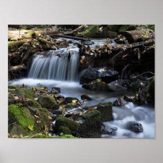 雑草間の滝 ポスター