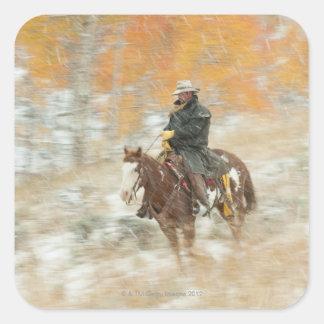 雨の乗馬者 スクエアシール