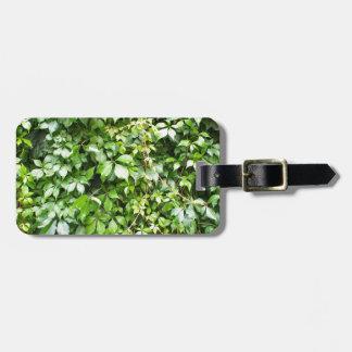 雨の後の緑の葉 ラゲッジタグ
