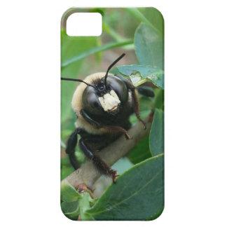 雨の日の蜂の電話箱 iPhone SE/5/5s ケース