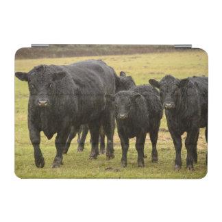 雨の牛 iPad MINIカバー