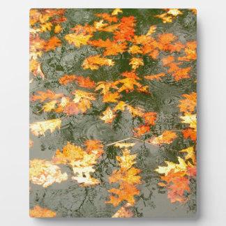 雨の落ちたな葉 フォトプラーク