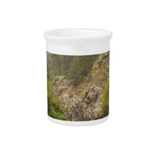 雨の霧深い大きい石の入り江および大きい石渓谷ドライブ ピッチャー