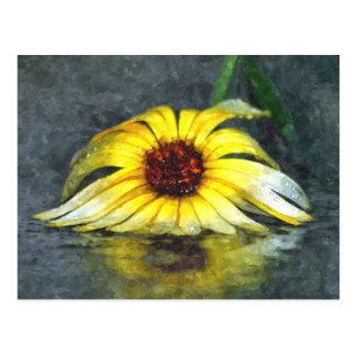 雨の黄色いデイジー ポストカード