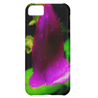 雨のfoxglove iPhone5Cケース