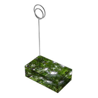 雨林のおおいの熱帯緑による日光 テーブルカードホルダー