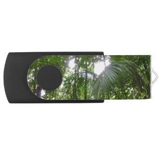 雨林のおおいの熱帯緑による日光 USBフラッシュドライブ
