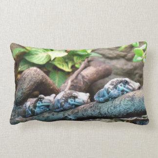 雨林のカエル(枕) ランバークッション