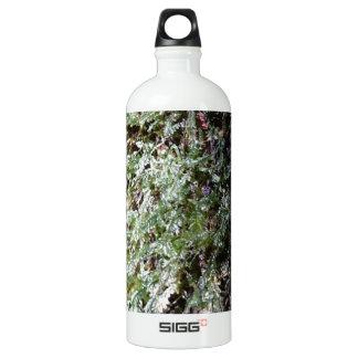 雨林のコケ ウォーターボトル
