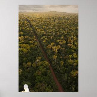 雨林の空中写真。 Iwokramaの予備、2 ポスター