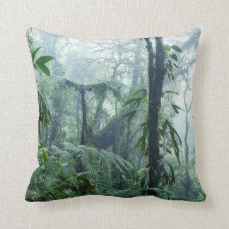 雨林、Monteverdeの雲の森林、コスタリカ クッション
