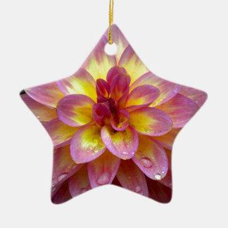 雨滴が付いている美しいピンクのダリアの花 陶器製星型オーナメント
