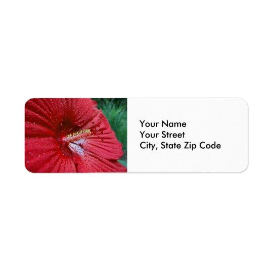 雨滴の差出人住所ラベルを持つ赤いハイビスカス 返信用宛名ラベル