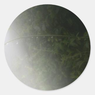 雨滴 ラウンドシール
