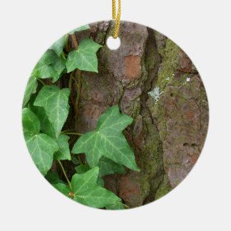 雨自然のキヅタの登山の樹皮 セラミックオーナメント