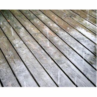 雨 写真彫刻(台付き)