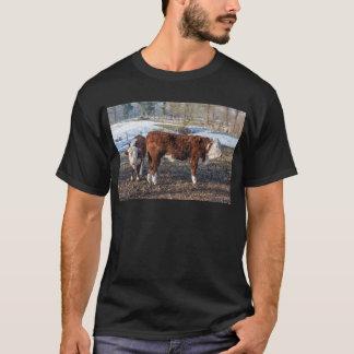 雪が付いている冬草原のHerefordの子牛 Tシャツ