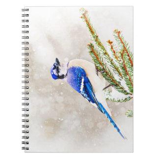 雪が付いている松の木のアオカケス ノートブック