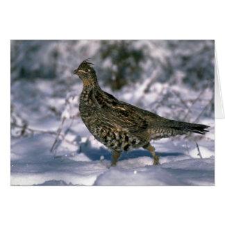 雪が多い森に立つRuffedライチョウ グリーティングカード