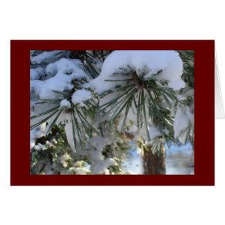雪で覆われたマツ カード
