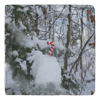 雪で覆われた木およびキャンディ・ケーンの装飾 トリベット