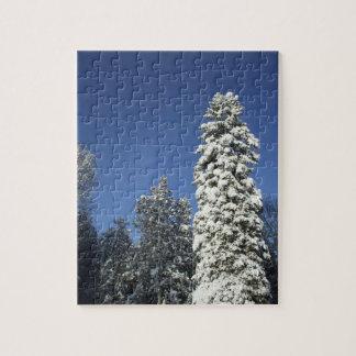 雪で覆われた松の木 ジグソーパズル