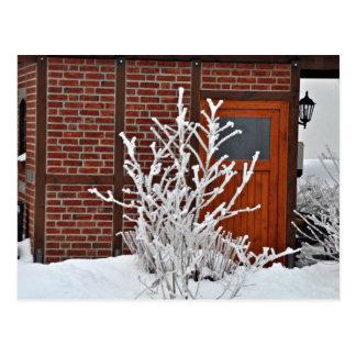 雪で覆われる植物 ポストカード