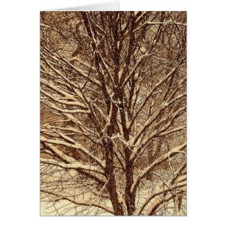 雪で輪郭を描かれる木 カード