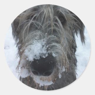 雪で遊んでいるアイリッシュ・ウルフハウンド ラウンドシール
