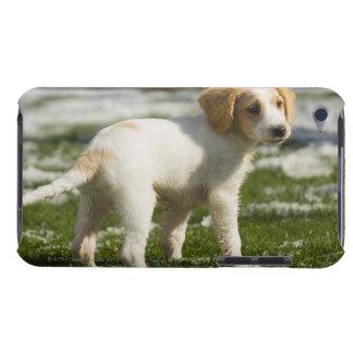 雪で遊んでいる子犬 Case-Mate iPod TOUCH ケース
