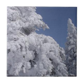 雪と塗られる針葉樹の木 タイル