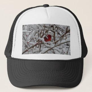 雪によって満たされる木の帽子の美しく赤い(鳥)ショウジョウコウカンチョウ キャップ