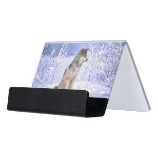 雪に坐っている材木オオカミイヌ属ループス デスク名刺ホルダー