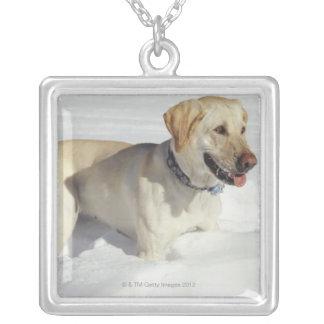 雪に立っている犬 シルバープレートネックレス