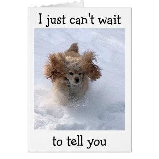 **雪に閉じ込められた滑稽な犬((幸せな第40を言います カード