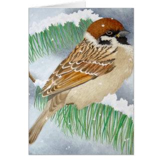 雪のすずめ カード