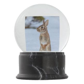 雪のウサギ スノーグローブ