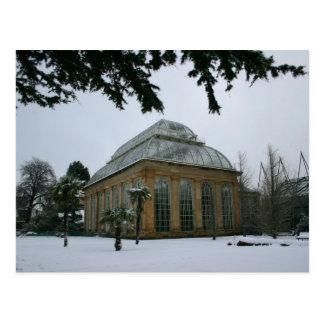 雪のエジンバラの王室のな植物園 ポストカード