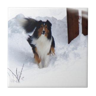 雪のコリー タイル