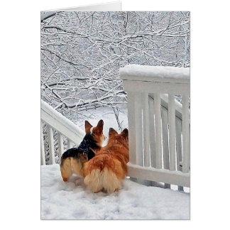 雪のコーギー ノートカード