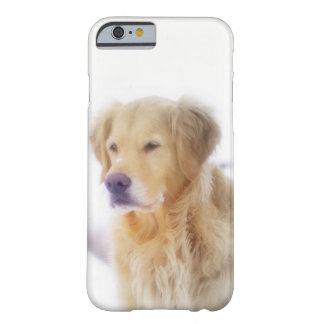 雪のゴールデン・リトリーバー BARELY THERE iPhone 6 ケース
