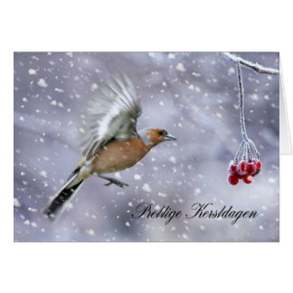 雪のズアオアトリが付いているDuchのクリスマスカード カード