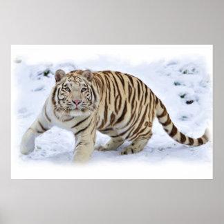雪のトラ ポスター